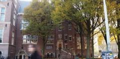 AMS Institute